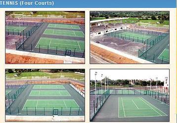 opulent-sai-baba-lays-on-spiritual-tennis.jpg